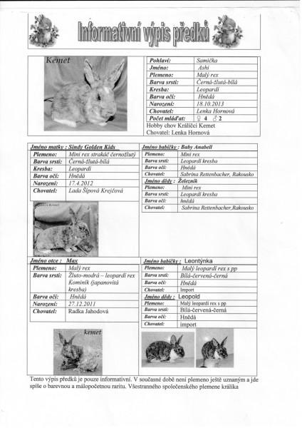 Výpis předků - Ashi